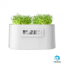2017 Moden Plant Digital Clock