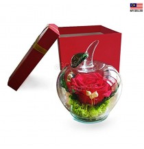 Valentine's Day Gift Eternal Life Flower Gift Box Cover Red Rose Glass Apple Creative Fashion Gift